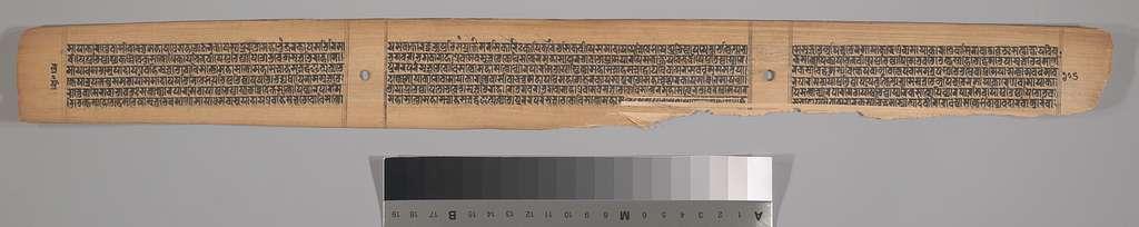 Folio from a Manuscript of the Pancavimsatisahasrika Prajnaparamita