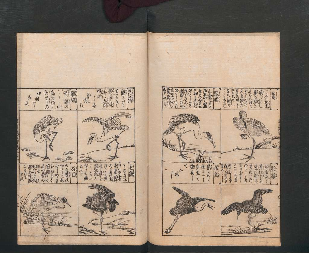 唐土訓蒙図彙 Illustrated Encyclopedia of China (Morokoshi kinmō zui)