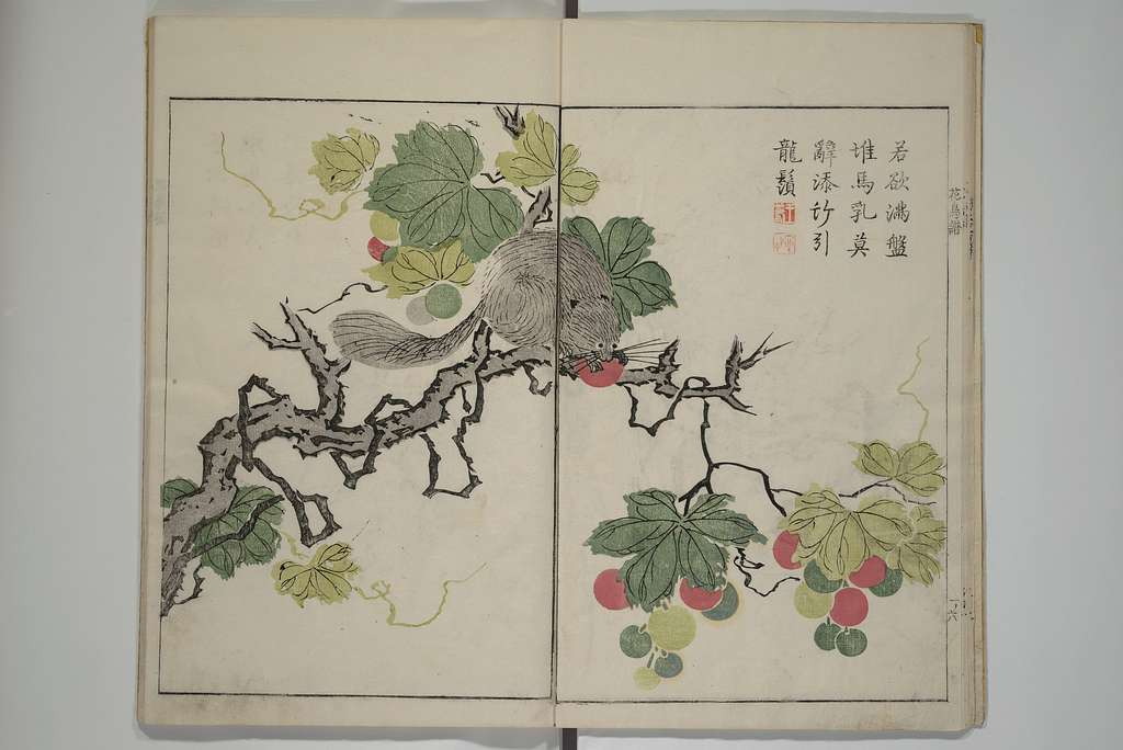 『芥子園畫傳』|The Mustard Seed Garden Manual of Painting
