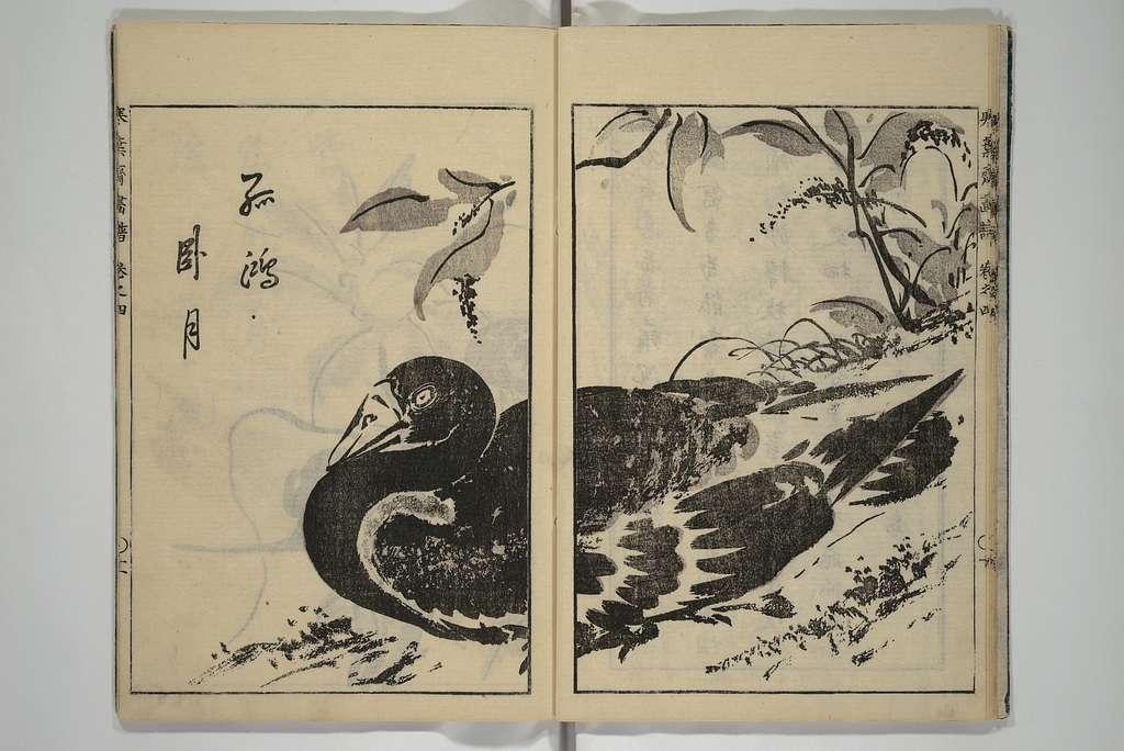 Kanyōsai Picture Album
